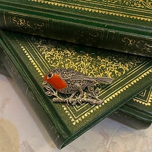 Robin Marcasite and Enamel broochinside with books close